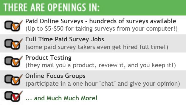 Surveys Paid earnings